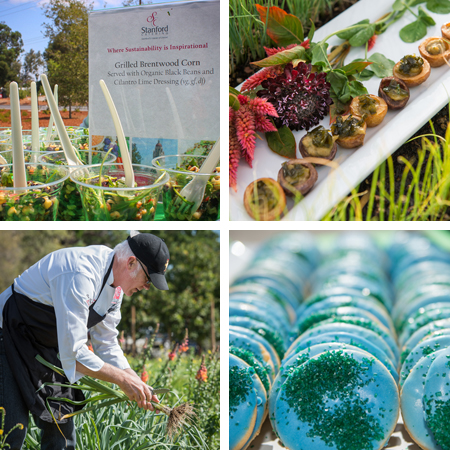 Stanford Catering photo montage of sustainability foods.