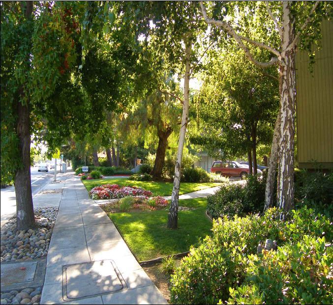 Arastradero West Apartments - Outside