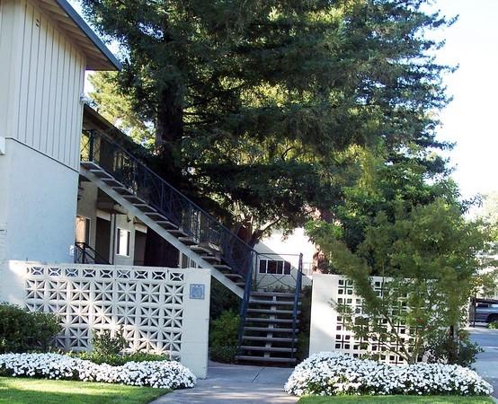 Noel Oaks Apartments - Outside