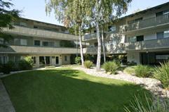 Stanford Villa Apartments Courtyard