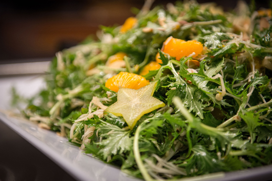 Manzanita Park salad