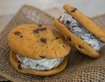 Gelato cookie sandwich.