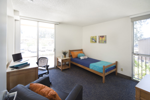 Single Student Efficiency Bedroom
