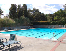 Oak Creek Apartments Pool
