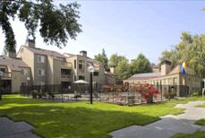 Southwood Apartments Courtyard