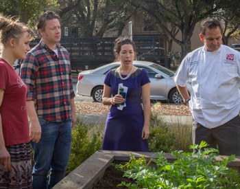 Stanford Dining sustainable garden