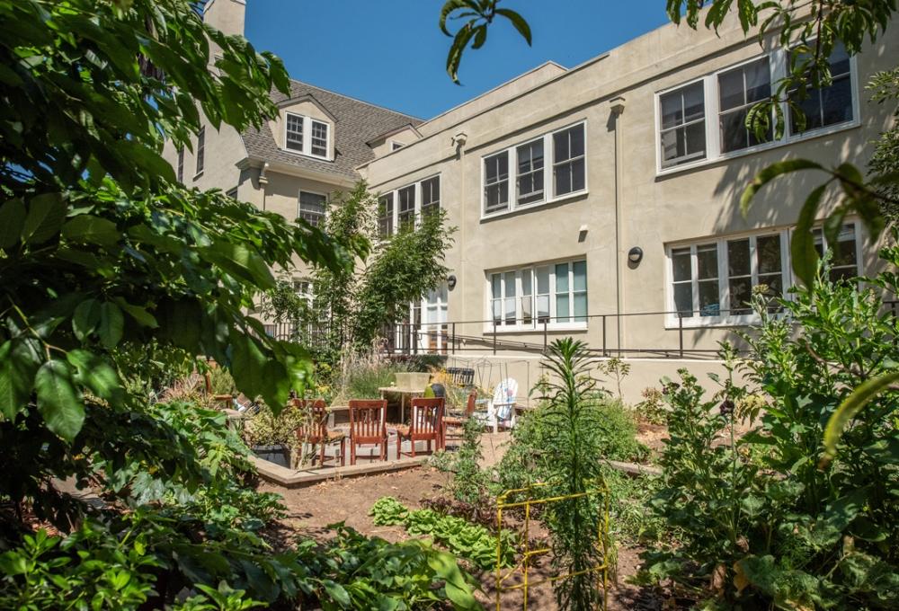Columbae - Courtyard